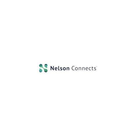 Nelson Staffing  Topher Hollinger