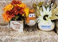 Walmart  Elizabeth Briseno